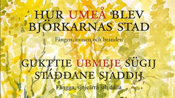 Hur Umeå blev björkarnas stad